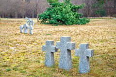 Stone crosses in the old cemetery Royalty Free Stock Photography