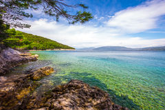 Stone crystal clear tourquise sea surrounding by pine trees in Croatia, Istria, Europe Stock Photo
