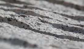 Stone cut. Detail of stone cut for building stock image