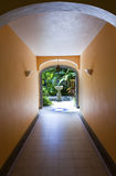 Stone decorative bowl at the end of a corridor on tropical park.  Royalty Free Stock Image