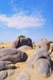 Stone in dersert Stock Photos