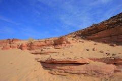 Stone desert Royalty Free Stock Image