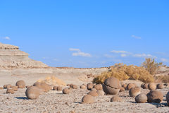 Stone desert in Ischigualasto, Argentina. Stock Photo
