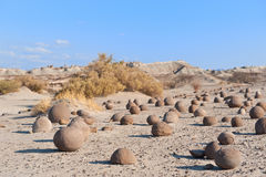 Stone desert in Ischigualasto, Argentina. Royalty Free Stock Photo