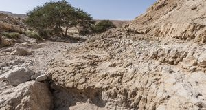 Stone desert in Israel. Rocky hills of the Negev Desert in Israel. Breathtaking landscape of the desert rock formations in the Southern Israel Desert Royalty Free Stock Image