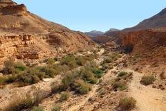 Stone desert landscape Stock Photo