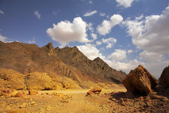 Stone desert Sinai Royalty Free Stock Images