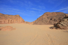 Stone Desert Royalty Free Stock Photography
