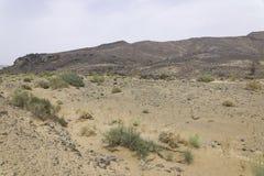 Stone desert. Desert of stones and gravel - Sahara - Best of Morocco Stock Photography