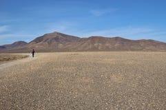 Stone desert and the volcano Pico Redondo on Lanzarote. Royalty Free Stock Image