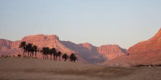 Stone Desert Royalty Free Stock Photos