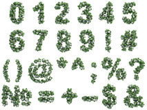 Stone digits covered with ivy, on white background Stock Photo