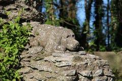 A stone dog Stock Photos