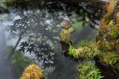 Stone doll in ancient pool with reflection of Japanese maple. Royalty Free Stock Image