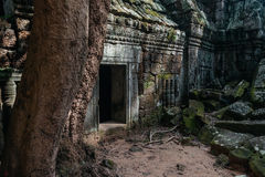 The stone door of an ancient temple at Angkor complex, Siem Reap, Cambodia royalty free stock photography