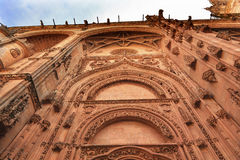 Stone Doorway Facade New Salamanca Cathedral Spain Stock Images