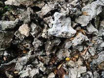 Stone on dry ground Royalty Free Stock Photography
