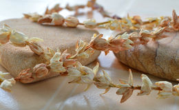 Stone and dry jasmine flower for skin spa Royalty Free Stock Image