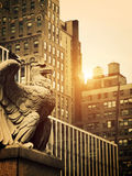 Stone Eagle in Manhattan Stock Photo