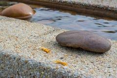 Stone on edge of swimming pool Royalty Free Stock Photo