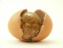 Stone egg and cracked shell Royalty Free Stock Images