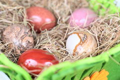 Stone eggs in nest of hay Royalty Free Stock Images
