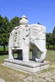 Stone elephant in the Eastern Royal Tombs of the Qing Dynasty, c Stock Photography