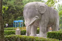 Stone elephant. The stone elephants are featured by simplicity and vividness.Elephants were placed on the sacred way of imperial tombs as early as in the Easter Stock Photos