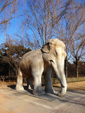 The stone elephant from Ming dynasty in Beijing Stock Image