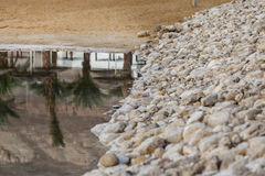 Stone embankment sand shore and palms reflected in water Royalty Free Stock Photo