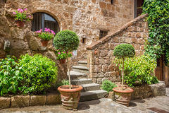 Stone Entrance To The Ancient House Full Of Plants Royalty Free Stock Image