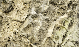 Stone eroded wall Royalty Free Stock Image