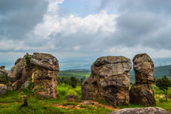 Stone face,The Amazing of Rock in National Park,Chaiyaphum Royalty Free Stock Images