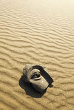 Stone face on desert Royalty Free Stock Image