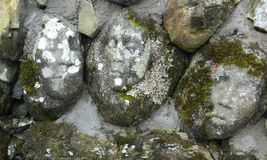 Stone faces. Faces carved into ruined stone walls above the Big Water of Fleet, Galloway Royalty Free Stock Images