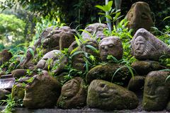 Stone faces in the forest Stock Image