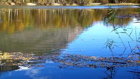 Stone falls into the lake, are circles in the water. Reflects the sky stock video footage