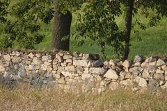 Stone fence of defence Royalty Free Stock Image