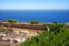 Stone fence near Mediterranean sea coast on south part of Malta Stock Image