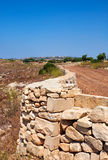 The stone fences stretch across the fields of Qrendi, Malta. Stock Photography