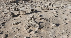 Stone field in the desert Royalty Free Stock Photography