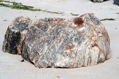 Stone fish. A stone looking like a fish stock photo