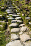 Stone flagged steps on path. Stone slabs making stairs on a path surrounded by wild mountain grass, United Kingdom Royalty Free Stock Images