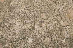 Stone floor background. Abstract background and texture of stone floor stock images