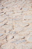 Stone floor background texture. Vertical copy space Stock Photography