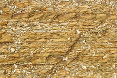 Stone Floor in Nature Royalty Free Stock Photo