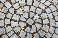 Stone Floor. Old Stone Floor and leaves Royalty Free Stock Photos