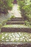 Stone floor pattern in garden Stock Photos