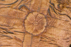 The stone floor pattern. Patterned surface of the stone. It is a flower leaf Royalty Free Stock Photography