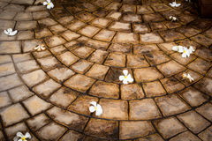 Stone floor tiles Stock Images